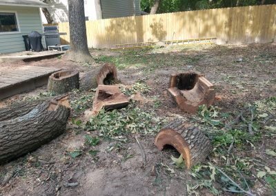 Tree Removal in The Woodlands
